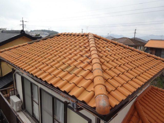 屋根現地調査の様子