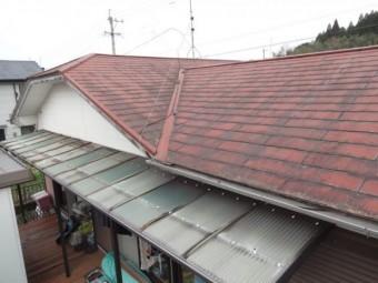 鹿児島市屋根調査