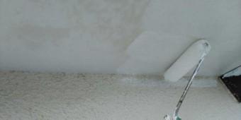 【鹿児島県曽於郡】大崎町にある住宅で足場の設置と養生、軒天塗装の様子を紹介します!軒天