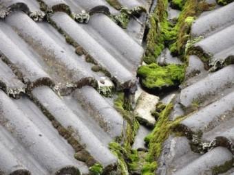 鹿児島市雨漏れのした屋根の様子