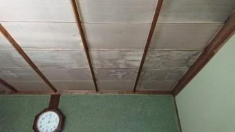 雨漏れ 天井の様子