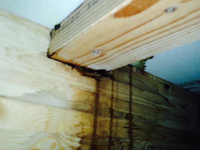 鹿児島市の雨漏れ補修工事