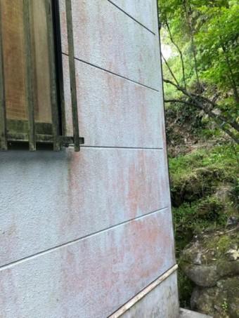 外壁のカビの様子