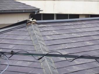 鹿児島市台風災害の様子