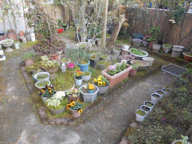 庭の補修工事
