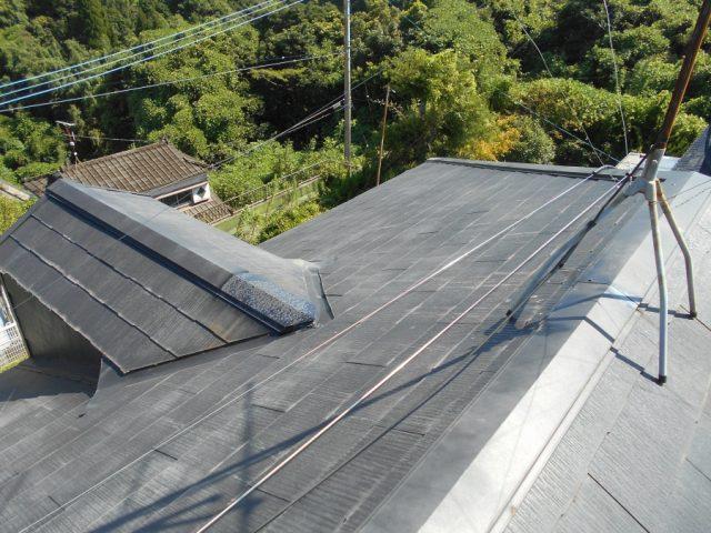 屋根全体の様子