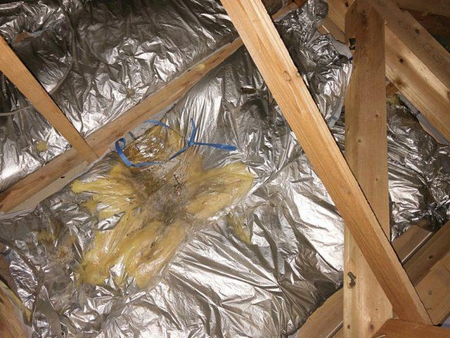 雨漏れ屋根裏の様子