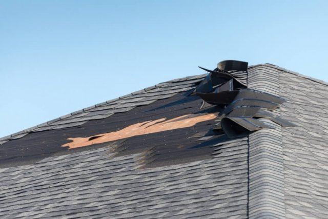 雪国の屋根