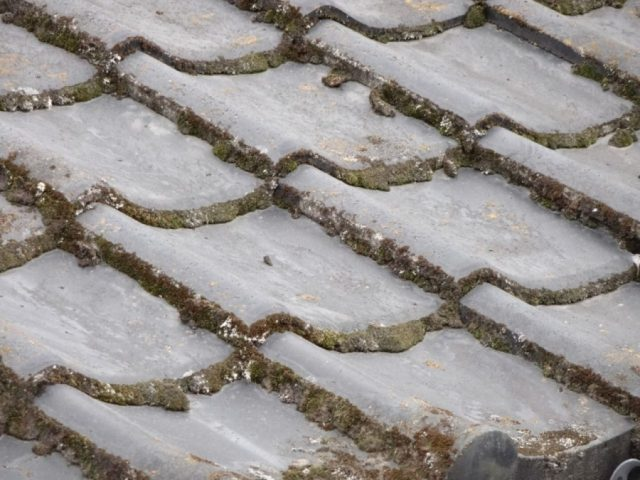 姶良市 セメント瓦の傷み