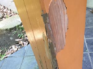 木塗装塗膜をつけるタイプ