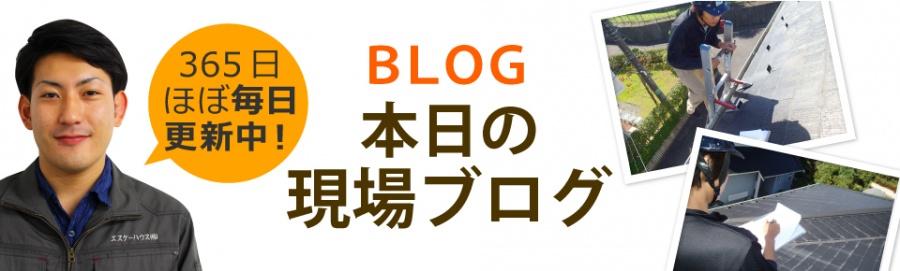 鹿児島市、薩摩川内市、日置市やその周辺エリア、その他地域のブログ