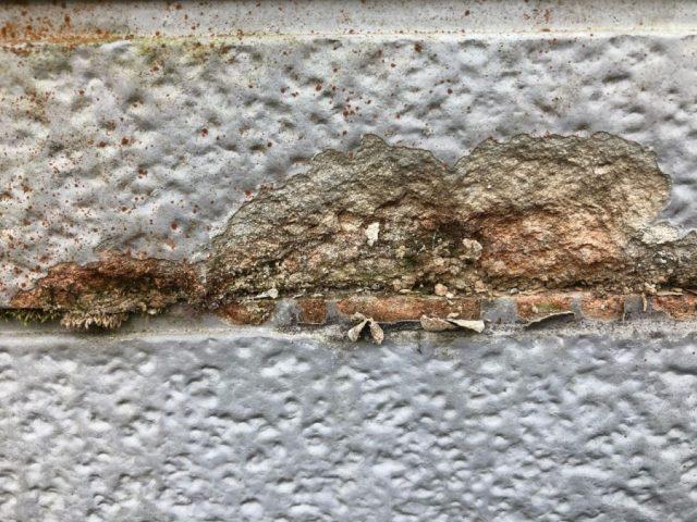 鹿児島市の外壁塗膜の剥がれ