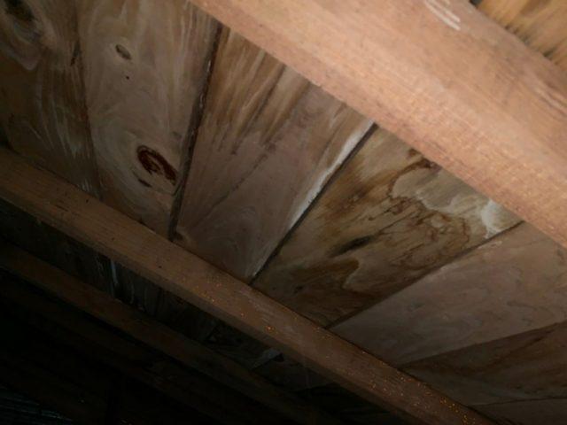 雨漏れ 屋根裏の様子