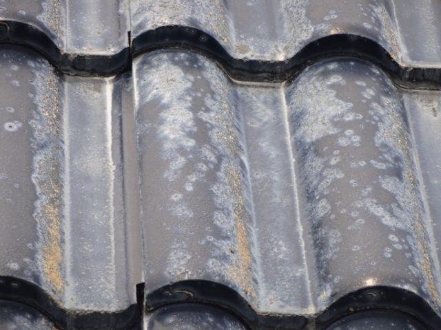 セメント屋根の劣化 拡大写真