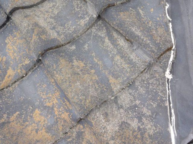 鹿児島市瓦屋根の現地調査の様子