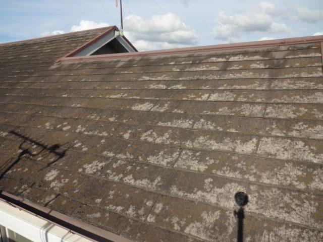 鹿児島市の屋根リフォーム前に現地調査へ行ってきました
