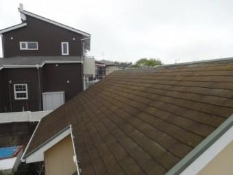 コケが生えている屋根