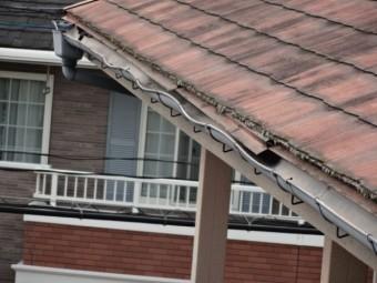 鹿児島市の雨樋蛇行の様子