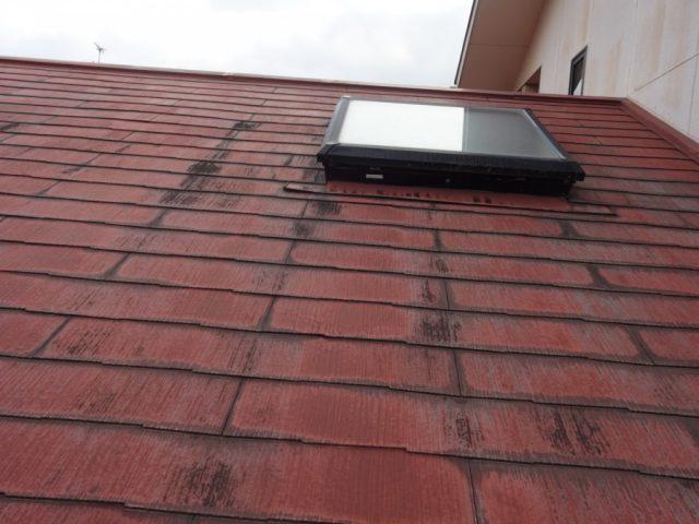 鹿児島市の調査天井窓の様子