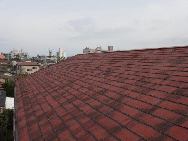 鹿児島市の屋根現地調査の様子