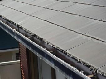 コロニアル屋根にコケ発生