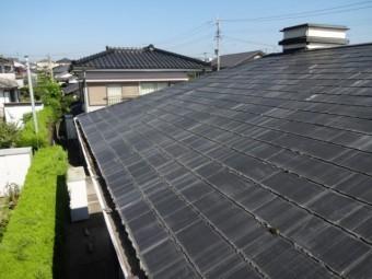 コロニアル屋根全体の様子