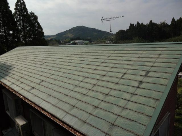 緑色のスレート屋根